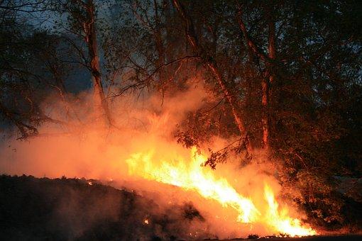 Evening, Outdoors, Fire, Spreading, Smoke