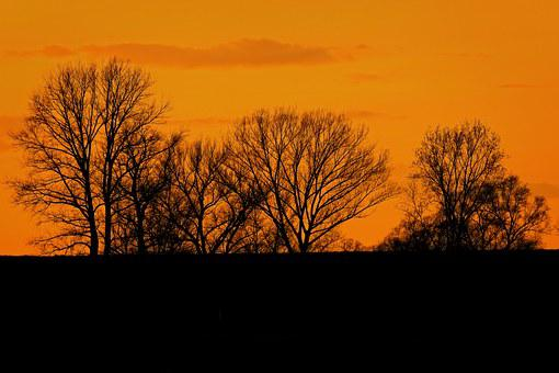 Sunset, Abendstimmung, Silhuette, Trees, Nature, Sky
