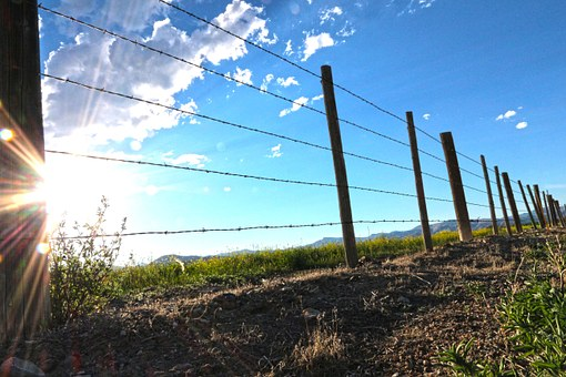 Fence, Farm, Barbedwire, Sunrise, Hdr, Beautiful