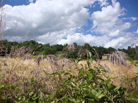 St Ostian, Ardèche, Grass, Fields, Landscape