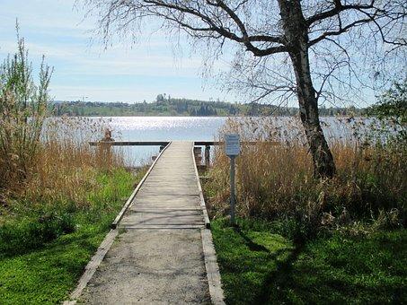 Lake, Fishing Pier, Relax, Water, Pfäffikersee