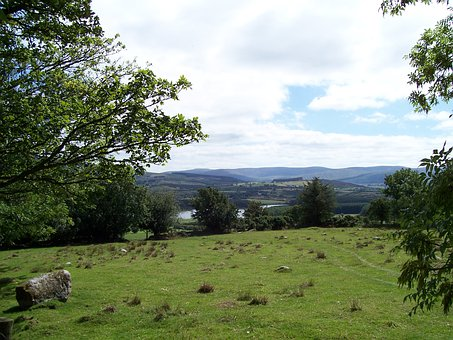 Field, View, County Wicklow, Ireland, Nature, Pasture
