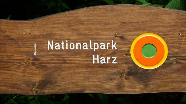 Bench, Harz, National Park, Harz Mountains, Rest, Wood