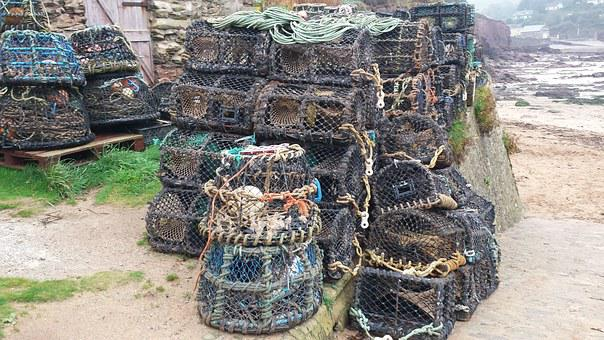 Fishing, Crab Pots, Crab