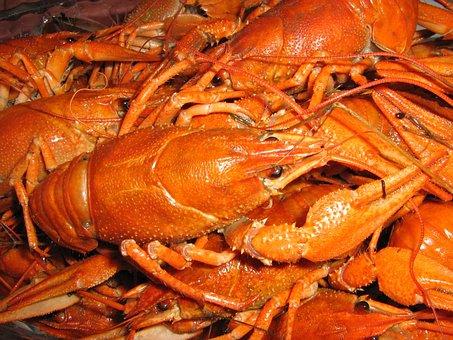 Crabs, Fish, Lobster, Beer, Food, Dinner