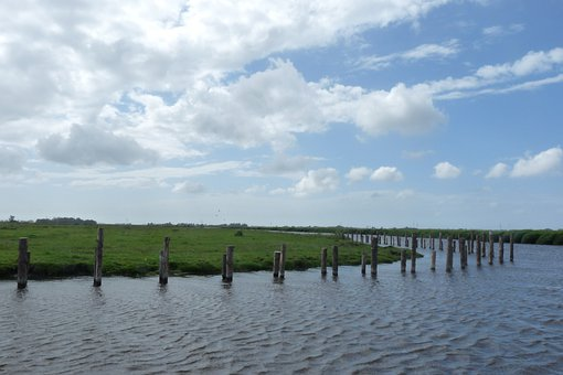 Eilandspolder, Nature, Islands, Graft, De Rijp