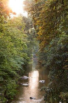 Bach, Baden Baden, Idyll, Water, Waters