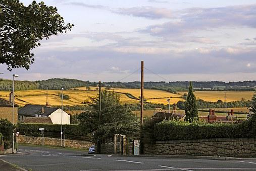 Fields, Fields Of Cereals, Out Of Town, South Elmsal