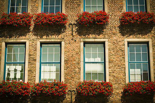 Architecture, Window, Facade, Old Window, Building