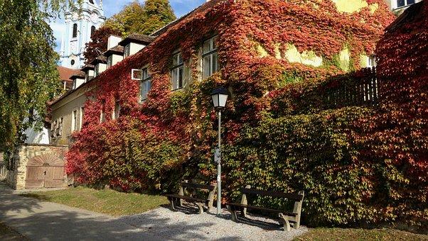 Autumn, Color, Nature, Autumn Gold, Landscape, Collapse