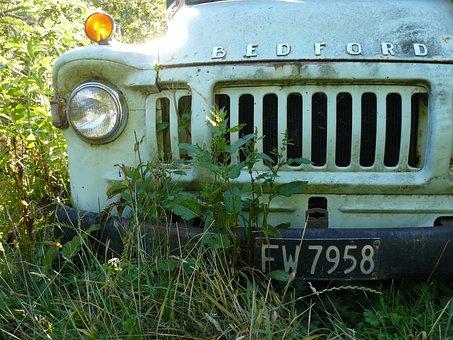 Bedford, Car, Old, Grass, Still, Bumper, Light