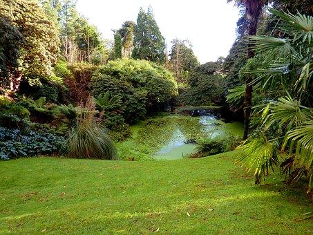 Cornwall, Garden, Lost Gardens Of Heligan