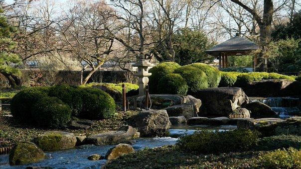 Asian, Nature, Japanese, Japanese Garden, Plant