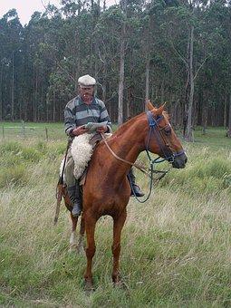 Arriero, Uruguay, Paisano, Rider, Field