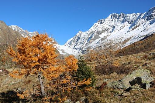 Switzerland, Lötschental, Mountain, Valais, Autumn