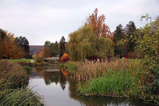 Lake, Water, Bridge, Malerwinkel, Web, Park, Autumn
