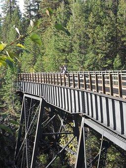 Bridge, Canada, British Columbia, Princeton, Forest