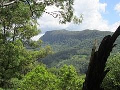 Gold, Coast, Hinterland, Gold Coast Wilderness