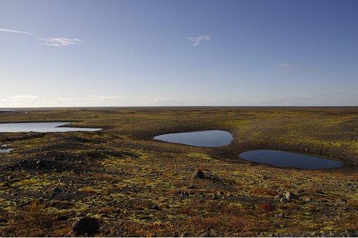 Iceland, Landscape, Skaftafell, Nature