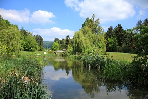 Park, Lake, Pond, Water, Malerwinkel, Painter Views