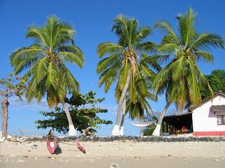 Madagascar, Canoe, Fisherman, Beach, Sea, Tropical