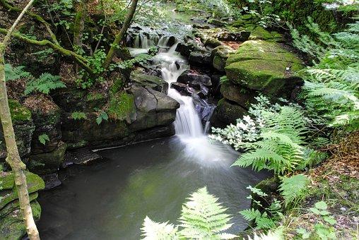 River, Healey-dell, Nature, Water, Stream, Foliage