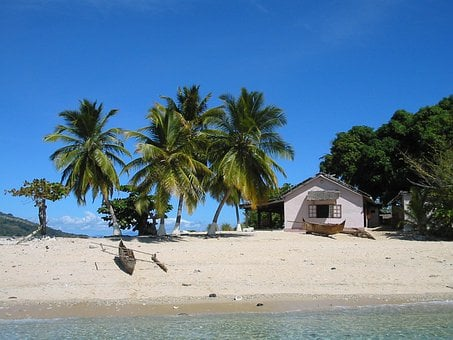 Island, Paradi, Tropic, Tropical, Coconut, Madagascar