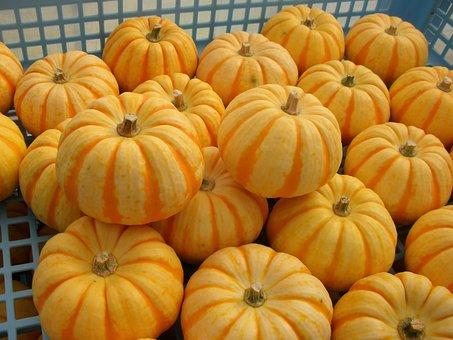 Pumpkin, Halloween, Puccini, Vegetables, Stripe