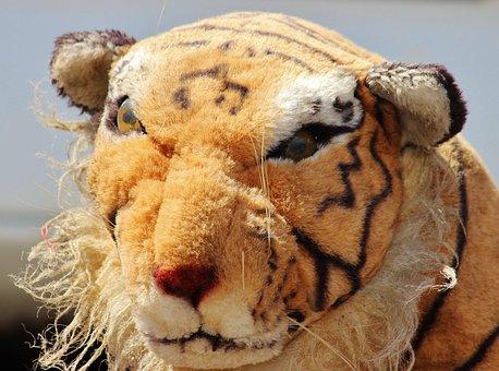 Tiger, Stuffed Animal, Old, Snuggle, Teddy Bear