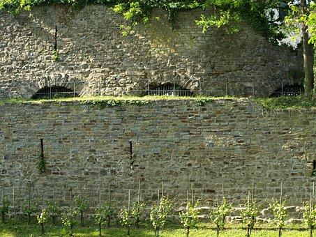 Castle Wall, Vineyard, City Blankenberg, Historically