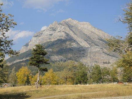Waterton, Mountain, Park, Nature, Canada, Alberta