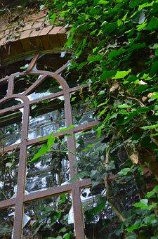 Window, Ruin, Haunting, Verwuchert