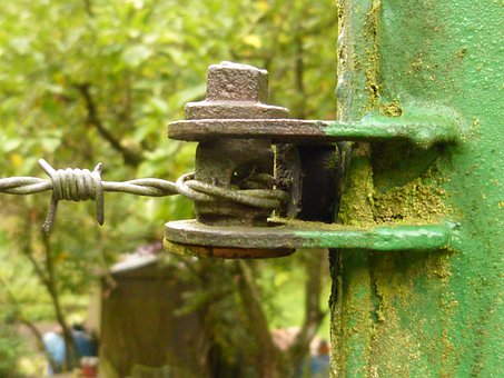 Mount, Wire, Stainless, Moss, Weathered, Screw