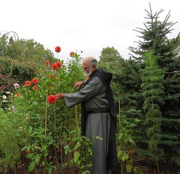 Dahlias, Flowers, Benedictine, Monk, Priest