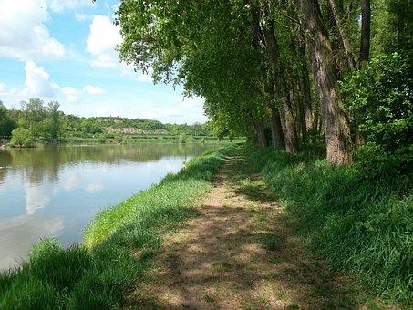 Landscape, Summer, Elbe, Roudnice, Vědomice