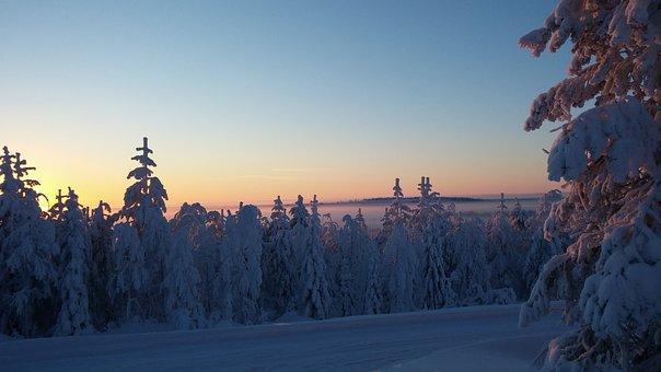 Sun, Frost, Winter, Winter Landscape, Finnish