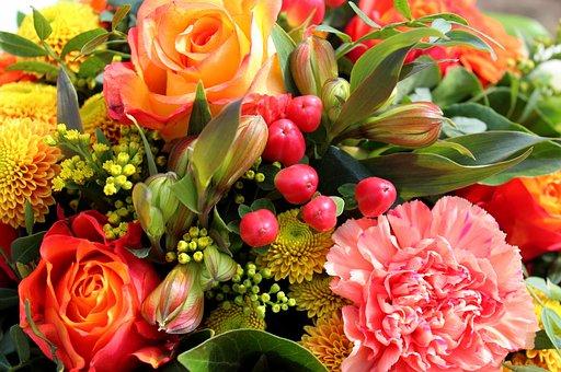 Organge, Flowers, Bouquet, Spring