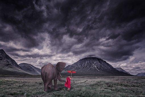 Elephant, Child, Monk, Landscape, Go, Further Away