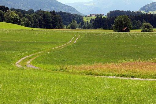 Lane, Away, Hiking, Walk, Nature, Landscape, Chiemgau