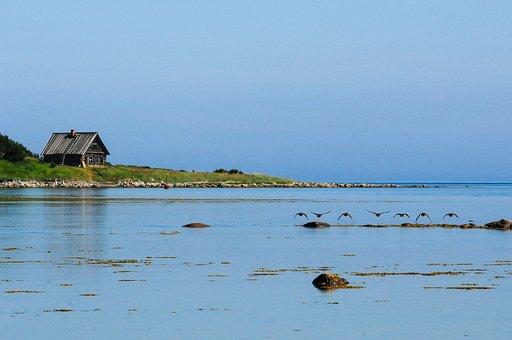 Island, Solovki, Anzere, View, Landscape, Sea, Beach