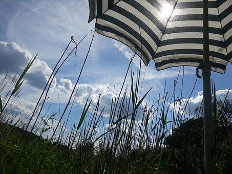 Screen, Stripes, Sky, Blue, Summer, Clouds, Grass