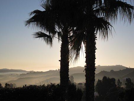 La Cala De Migas, Spain, Sunrise, Morning, Palms