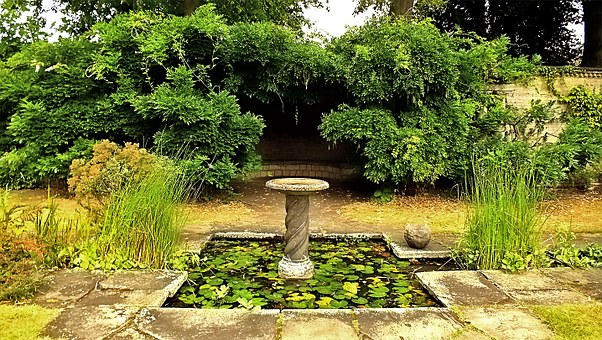 Holiday Garden, Birdbath, Pond, Pool, Tourism, Natural