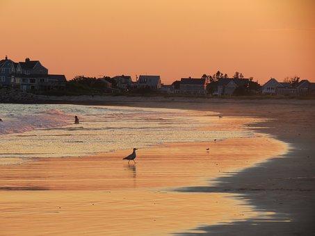Sunset, Coastline, Seascape, Russet