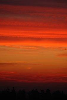 Sunrise, Forest, Minstead, Red, Orange, Landscape