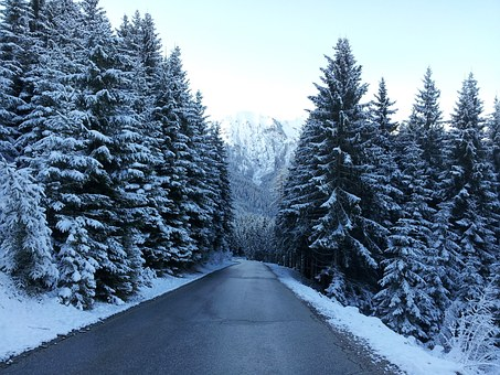 Road, Winter, Snow, Wintry, White, Cold, Tree