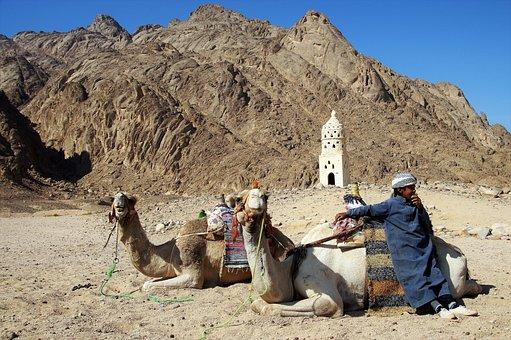 Desert, Bedouin, Young, Habit, Turban, A Bedouin Boy