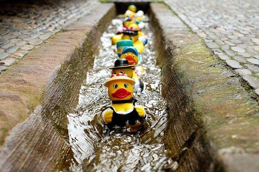 Rubber Duck, Bath Duck, Toys, Costume, Fun Bathing