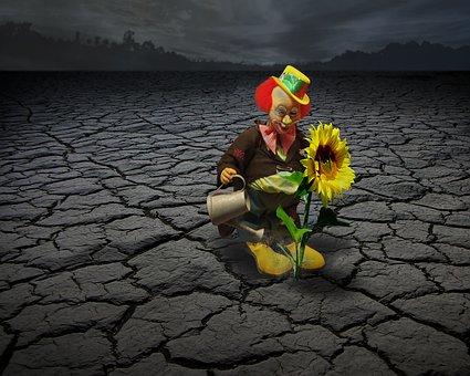 Clown, Circus, Face, Funny, Fun, Sun Flower