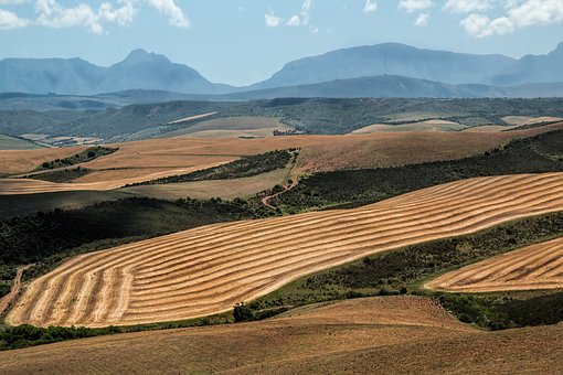 Landscape, Wheat Fields, Harvest, Ploughed, Mountains
